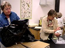 Herbarium volunteers