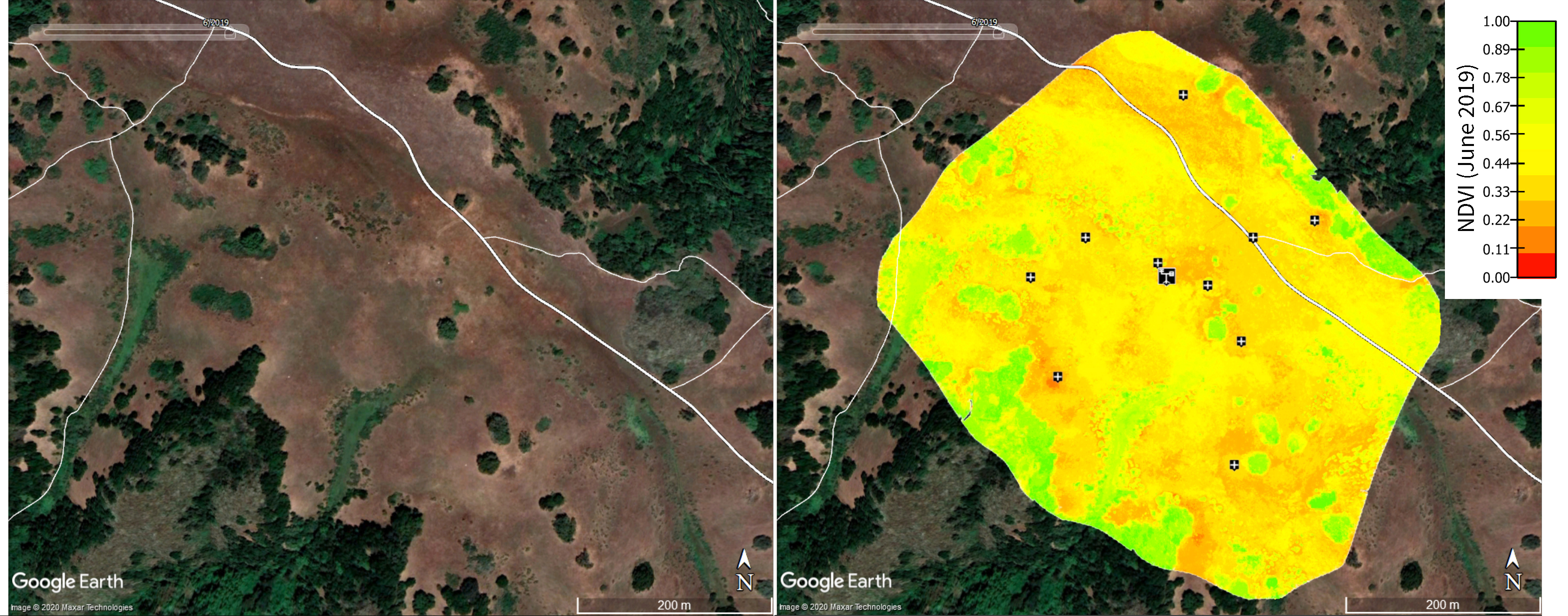 Google Earth image without and with NDVI map
