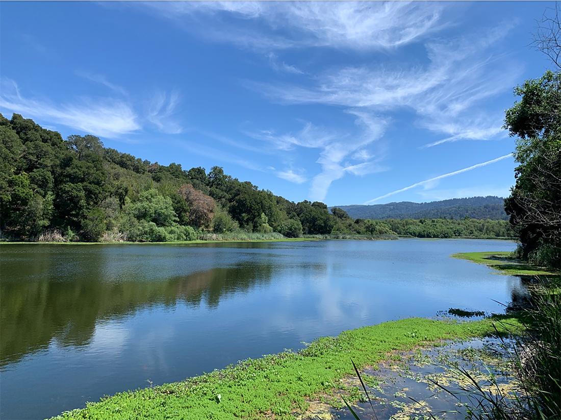 Searsville Reservoir at Jasper Ridge Biological Preserve (source JR staff).