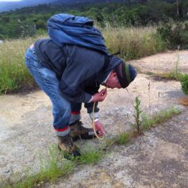 Sampling ants for the bi-yearly ant survey (Subject: David Moss, volunteer) by Jane Moss