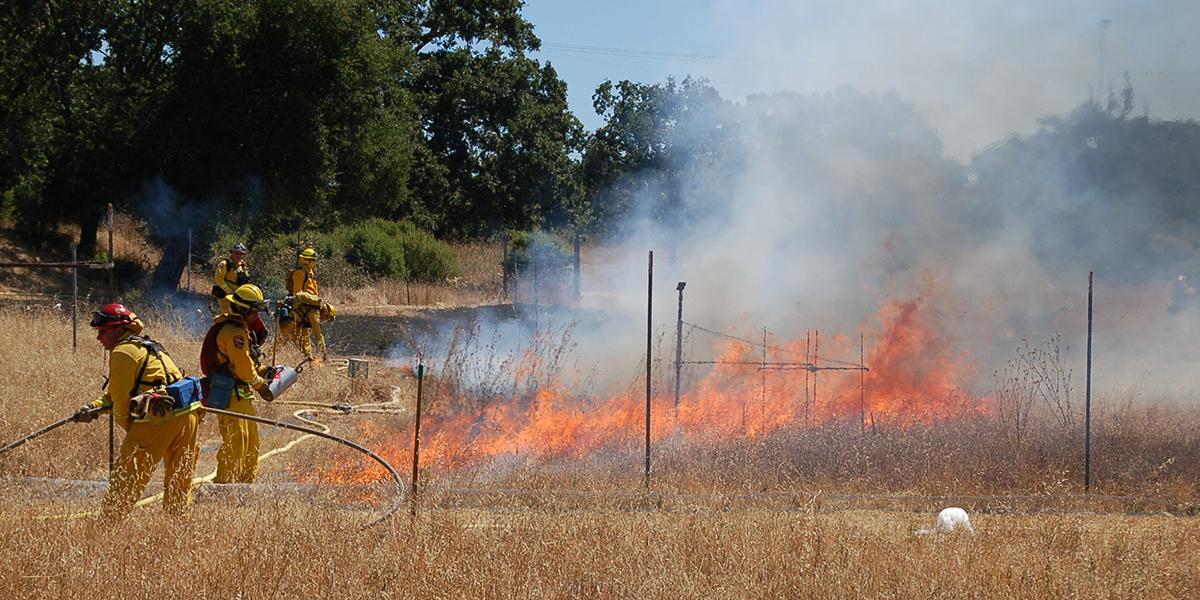 prescribed burn in JRGCE july 2011