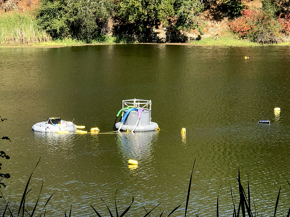 Initial deployment of the augmented downwelling experiment, with battery-operated pumps floating at left, the downwelling tube at center, and yellow buoys marking sensor locations.