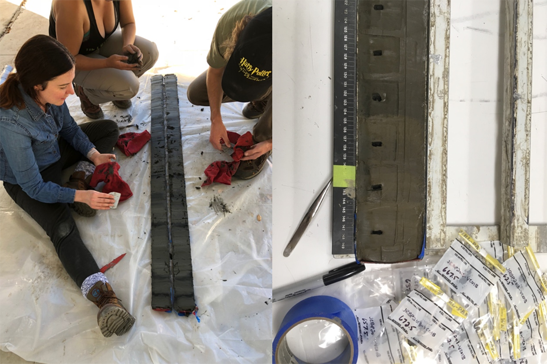 Figure 2a and 2b. After extracting the cores from the reservoir, they were split and photographed (2a) prior to more detailed extractive sampling (2b)