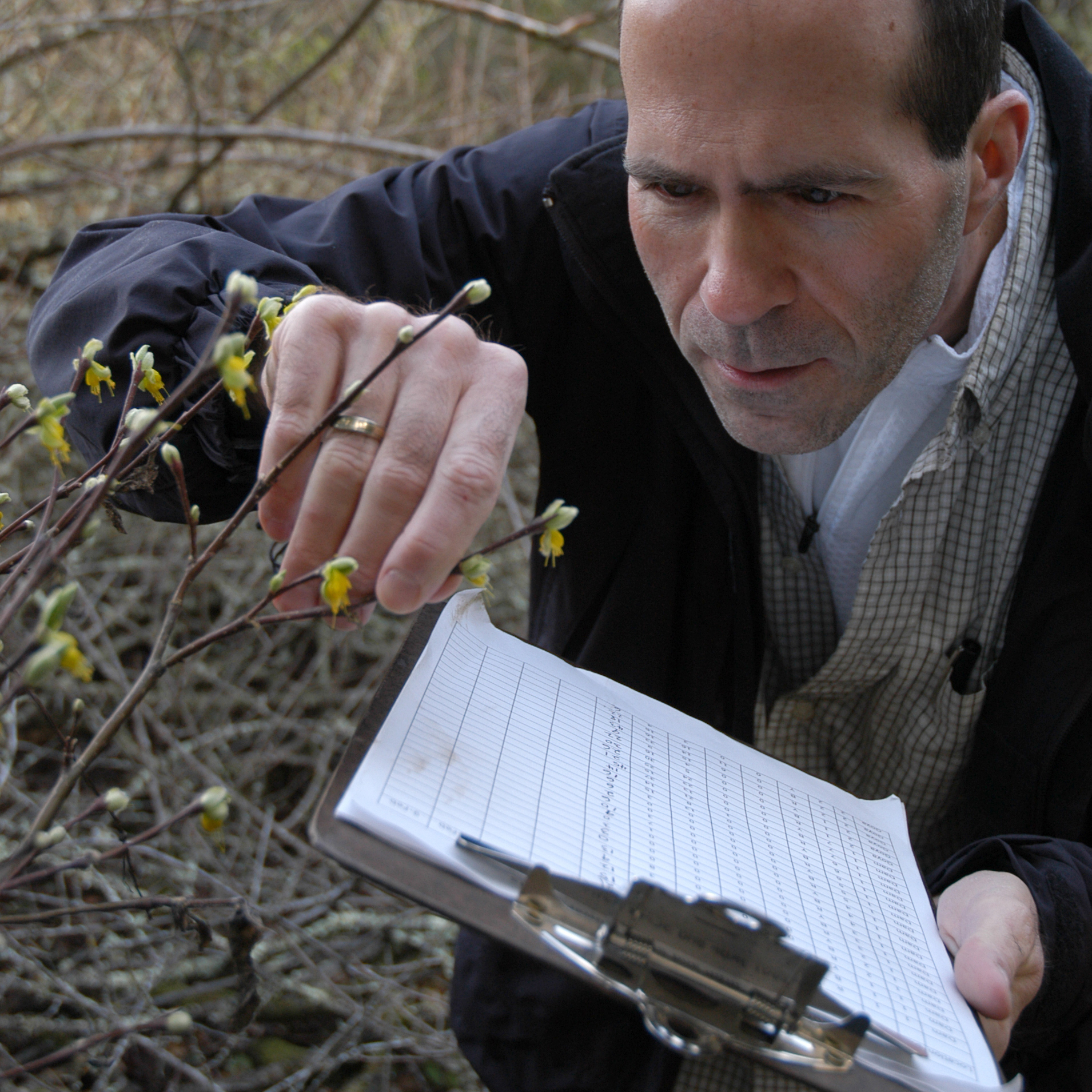 Bill Graves monitoring his study plants