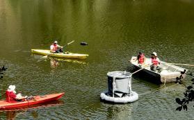 Investigators (R to L) Dave Koweek, Clara Garcia-Sanchez, Parker Gassett, Ken Caldeira installing a downwelling tube in Searsville Reservoir.