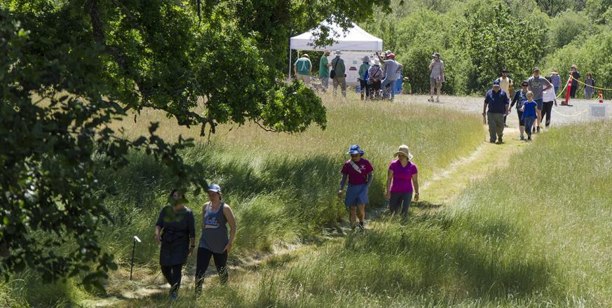 Hikers taking self-guided tour around Searsville Lake at Jasper Ridge